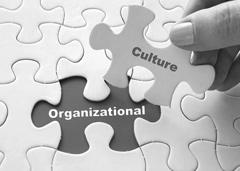 Leadership & Organizational Development